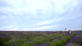 Μικρό κορίτσι σε έναν τομέα lavender απόθεμα βίντεο