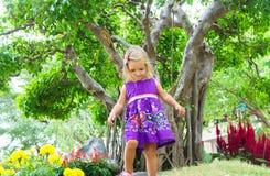 Μικρό κορίτσι σε έναν τροπικό κήπο αειθαλές μικροσκοπικό δέντρο πεύκων μπονσάι Στοκ φωτογραφία με δικαίωμα ελεύθερης χρήσης