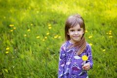 Μικρό κορίτσι στην πράσινη χλόη με camomile στοκ εικόνες