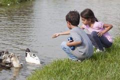 Μικρό κορίτσι στη λίμνη παπιών Στοκ Εικόνες