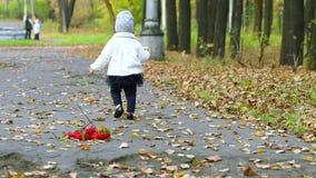 Μικρό κορίτσι στη φούστα που περπατά στο πάρκο φθινοπώρου απόθεμα βίντεο