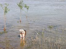 Μικρό κορίτσι στο νερό Στοκ Φωτογραφίες