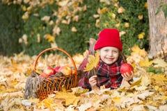 Μικρό κορίτσι στο πάρκο φθινοπώρου με το καλάθι μήλων Στοκ Εικόνα