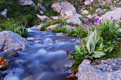 Μικρό κρύο ελατήριο στα βουνά του Κιργιστάν στοκ εικόνες με δικαίωμα ελεύθερης χρήσης