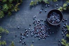 Μικρό κύπελλο με τους σπόρους του ιουνιπέρου στοκ εικόνα με δικαίωμα ελεύθερης χρήσης