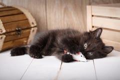 Μικρό μαύρο παιχνίδι παιχνιδιού γατακιών σε ένα ξύλινο υπόβαθρο Στοκ Εικόνα