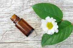 Μικρό μπουκάλι του ουσιαστικού πετρελαίου, των φρέσκων φύλλων και των chamomile λουλουδιών πέρα από το ξύλινο υπόβαθρο Τοπ άποψη, Στοκ Εικόνα