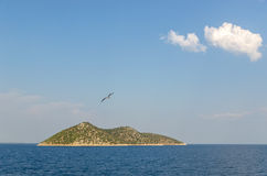 Μικρό νησί και ένα seagull πέταγμα Στοκ Φωτογραφία