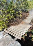 Μικρό ξύλινο brige Στοκ εικόνα με δικαίωμα ελεύθερης χρήσης
