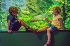 Μικρό παιδί και κορίτσι που προσέχουν τα τροπικά ψάρια κοραλλιών στη μεγάλη δεξαμενή ζωής θάλασσας Παιδιά στο ενυδρείο ζωολογικών Στοκ φωτογραφία με δικαίωμα ελεύθερης χρήσης