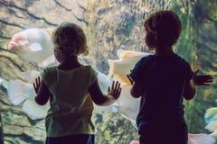 Μικρό παιδί και κορίτσι που προσέχουν τα τροπικά ψάρια κοραλλιών στη μεγάλη δεξαμενή ζωής θάλασσας Παιδιά στο ενυδρείο ζωολογικών στοκ φωτογραφία
