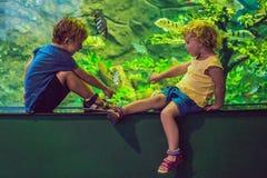 Μικρό παιδί και κορίτσι που προσέχουν τα τροπικά ψάρια κοραλλιών στο μεγάλο λι θάλασσας Στοκ φωτογραφία με δικαίωμα ελεύθερης χρήσης