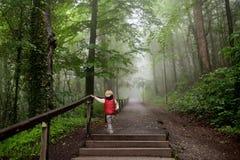 Μικρό παιδί κατά τη διάρκεια του περίπατου στο ομιχλώδες μυστήριο πάρκο Στοκ Εικόνες