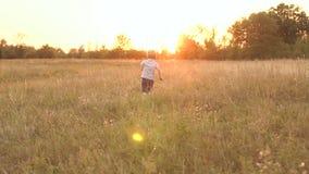 Μικρό παιδί που τρέχει στον τομέα στο ηλιοβασίλεμα, αργό MO απόθεμα βίντεο