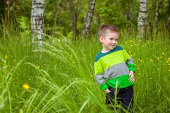 Μικρό παιδί στην πράσινη χλόη Στοκ Φωτογραφίες