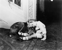 Μικρό παιδί και ο ύπνος σκυλιών του (όλα τα πρόσωπα που απεικονίζονται δεν ζουν περισσότερο και κανένα κτήμα δεν υπάρχει Εξουσιοδ Στοκ φωτογραφία με δικαίωμα ελεύθερης χρήσης