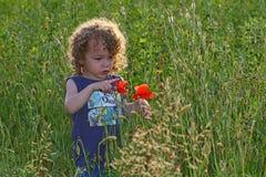 Μικρό παιδί και παπαρούνες στοκ εικόνες με δικαίωμα ελεύθερης χρήσης