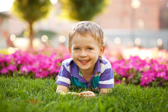 Μικρό παιδί μεταξύ των λουλουδιών Στοκ εικόνα με δικαίωμα ελεύθερης χρήσης