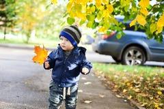 Μικρό παιδί με τα φύλλα σφενδάμου φθινοπώρου Στοκ φωτογραφία με δικαίωμα ελεύθερης χρήσης