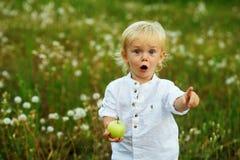 Μικρό παιδί με την πράσινη Apple στη φύση Στοκ Εικόνες