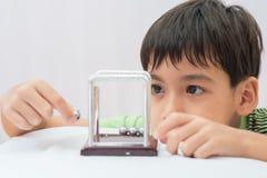 Μικρό παιδί που μαθαίνει τη σφαίρα ισορροπίας Newton για την επιστήμη φυσική στοκ εικόνες