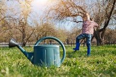 Μικρό παιδί που φορά τα μπλε wellies που σκάβουν στον κήπο Στοκ Εικόνα