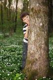 Μικρό παιδί στο δάσος στον τομέα λουλουδιών Στοκ Εικόνες
