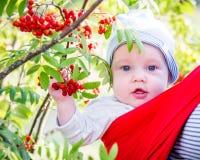 Μικρό παιδί στο πάρκο πτώσης Στοκ Φωτογραφία