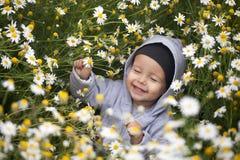 Μικρό παιδί στο camomile λιβάδι Στοκ φωτογραφία με δικαίωμα ελεύθερης χρήσης