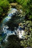 Μικρό ρεύμα σε ένα πάρκο Στοκ φωτογραφία με δικαίωμα ελεύθερης χρήσης