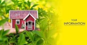 Μικρό σπιτιών διαθέσιμο χεριών ήλιων φύλλων σχέδιο φύσης φυτών πράσινο Στοκ φωτογραφίες με δικαίωμα ελεύθερης χρήσης