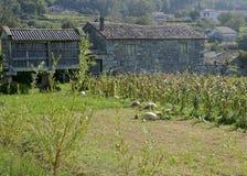 Μικρό της Γαλικίας αγρόκτημα, Ισπανία Στοκ φωτογραφία με δικαίωμα ελεύθερης χρήσης