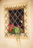 Μικρό χαριτωμένο παράθυρο με το σφυρηλατημένο δικτυωτό πλέγμα Στοκ Εικόνες