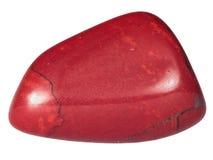 Μικρό χαλίκι της κόκκινης μακροεντολής ιασπίδων που απομονώνεται Στοκ φωτογραφία με δικαίωμα ελεύθερης χρήσης