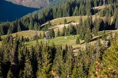 Μικρό χωριό στα Καρπάθια βουνά φθινοπώρου Στοκ φωτογραφία με δικαίωμα ελεύθερης χρήσης