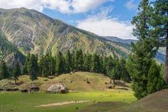 Μικρό χωριό στο λιβάδι νεράιδων το καλοκαίρι, Gilgit, Πακιστάν Στοκ Εικόνα