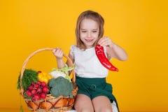 Μικρό όμορφο κορίτσι που κρατά ένα καλάθι των φρέσκων υγιών τροφίμων φρούτων και λαχανικών στοκ εικόνες