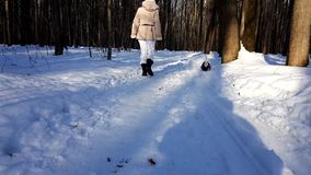 Μικρό dag που τρέχει γρήγορα στο χιόνι απόθεμα βίντεο