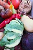 Μικτά βιο λαχανικά στοκ εικόνα