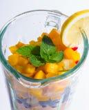 Μικτά εξωτικά φρούτα στο μπλέντερ Στοκ εικόνα με δικαίωμα ελεύθερης χρήσης