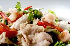 μικτά θαλασσινά σαλάτας στοκ εικόνες