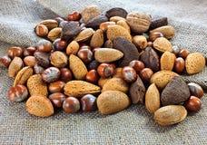 Μικτά καρύδια στο σάκο γιούτας Στοκ Φωτογραφία