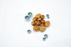 Μικτά καρύδια 2 Στοκ εικόνες με δικαίωμα ελεύθερης χρήσης