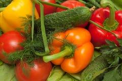 μικτά λαχανικά Στοκ εικόνα με δικαίωμα ελεύθερης χρήσης