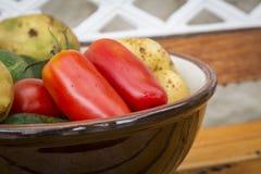 Μικτά οργανικά λαχανικά στο κύπελλο Στοκ φωτογραφίες με δικαίωμα ελεύθερης χρήσης