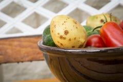 Μικτά οργανικά λαχανικά στο κύπελλο Στοκ Εικόνα