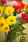 Μικτά λουλούδια Στοκ φωτογραφία με δικαίωμα ελεύθερης χρήσης