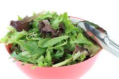 Μικτά πράσινα για τη σαλάτα στοκ εικόνες
