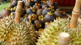 Μικτά τροπικά γλυκά juicy φρούτα εποχής, τοπική αγορά της Ταϊλάνδης Μεγάλο Monthong Durian και Mangosteen απόθεμα βίντεο