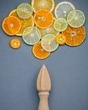 Μικτά φρέσκα εσπεριδοειδή και ξύλινο juicer για τα θερινά εσπεριδοειδή ju Στοκ εικόνα με δικαίωμα ελεύθερης χρήσης